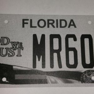 My florida plate